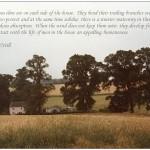 Badingham/quotation 20 (Eugene-MacNeill)