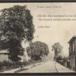 Leek Wootton elm/quotation 4 (John Clare)