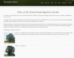 elms_of_essec_cambridgeshire_border_gallery